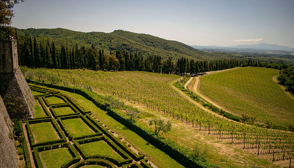 Chianti tour with lunch